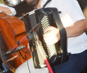 Frederic-Viale-www-jazz-manouche.com (35)